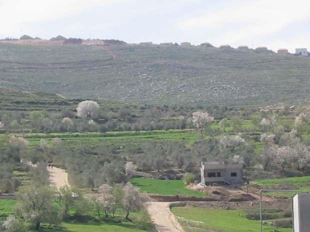 En lo alto, las construcciones de Yitzhar. Por esa colina bajan los colonos a agredir a la familia Soufan. Hoy, los soldados vigilan a las manifestantes.