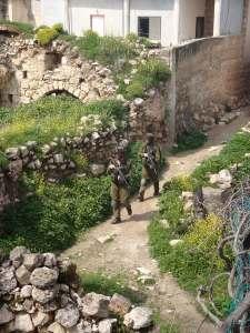 Soldados en Awarta, marzo 2011 (ISM)