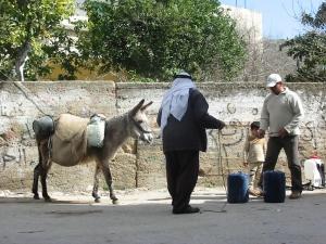 Pobladores de Madama cargando costosos bidones de agua en burro