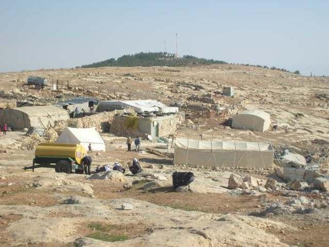 Um Fagarah (Colinas del Sur de Hebrón). Detrás del bosque sobre la colina, la colonia judía de donde bajan a agredir a la comunidad palestina de pastores