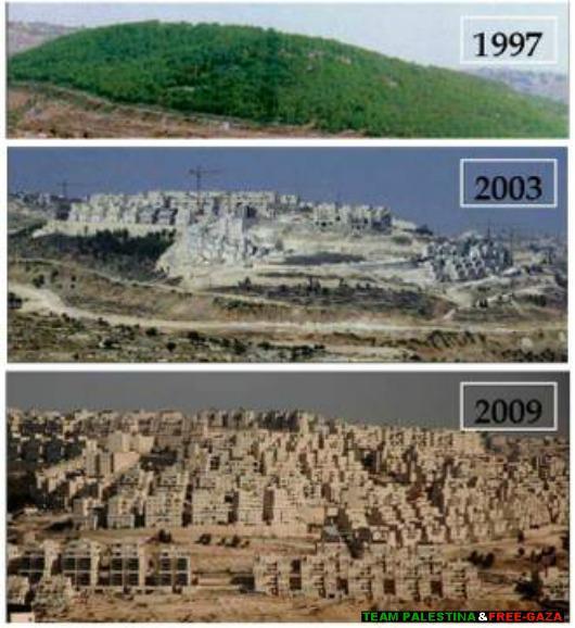 Proceso de construcción de la colonia Har Homa en lo que era la colina Abu Gnein, en las afueras de Belén.