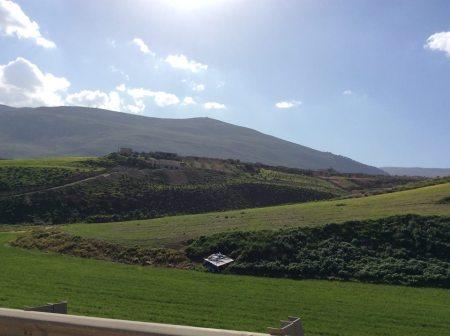Tierras de Yenín, Cisjordania (Asmaa Nawajha)