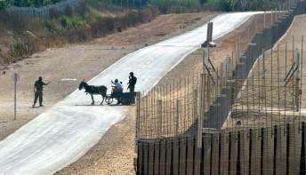 Soldados israelíes detienen a palestinos en un carro tirado por burro en la barrera de separación, cerca de la ciudad de Qalqilya (19/7/2004, Nir Elias, REUTERS).