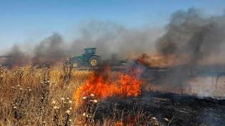 Fuego provocado por los globos incendiarios en una comunidad israelí cerca de la valla de Gaza (AFP).